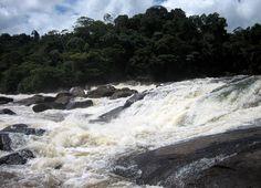 Stoelmanseiland is een eiland in de binnenlanden van Suriname. Stoelmanseiland, ook wel Stoeli genoemd, ligt bij de samenvloeiing van de Tapanahonyrivier en