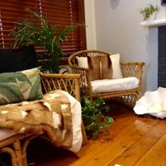 Winter Inspiration Entry | Warming up the sunroom with some ethically sourced springbok #mcdonaldjones #mcdonaldjoneshomes