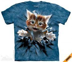 Ginger Kitten Breakthrough - The Mountain -koszulka z kotkiem - śmieszne koszulki ze zwierzętami - www.veoveo.pl