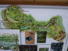 San Diego Zoo Safari Park Tiger Trail (Version 2.1) Farm Games, San Diego Zoo, Safari, Trail, Park, Design, Parks, Design Comics
