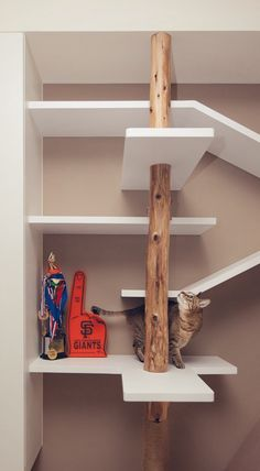 Cat scratch post and shelving