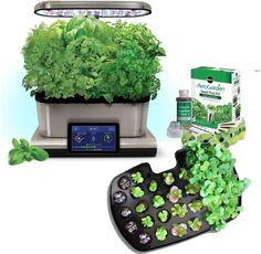 AeroGarden Harvest Touch 6 LED Stainless Steel with Gourmet Herb Seed Pod Kit