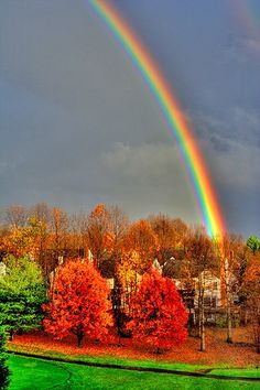 Rainbow  http://amazingcolorfulrainbows.blogspot.com