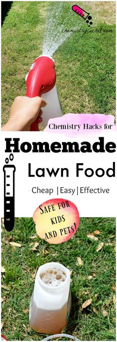 Safe and Incredibly Effective Homemade Lawn Food Another fantastic chemistry hack homemade lawn food Easy cheap and effective Full tutorial for homemade lawn fertilizer o. Gardening For Beginners, Gardening Tips, Grass Fertilizer, Organic Lawn Fertilizer, Organic Lawn Care, Lawn Care Tips, Fall Lawn Care, Lawn Maintenance, Landscape Maintenance