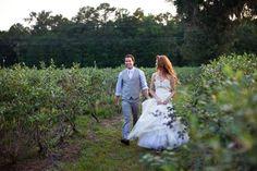 blueberry farm wedding <3