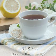 You could wake up grumbling with one eye open. Or you could #Rise & bloom. #morning #canitbememorialdayagain?