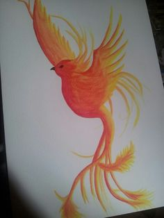 Watercolour Pheonix