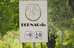 visit and wine tasting at Podere Fornacella in Montalcino