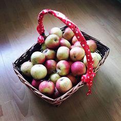 #apples #applebasket #polishapples