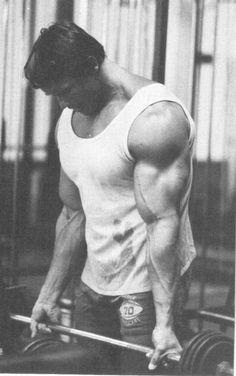 arnold biceps #bodybuilding
