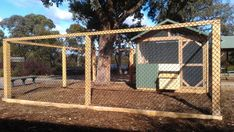 Primary School chook house & run designed & built by Yummy Gardens, Melbourne