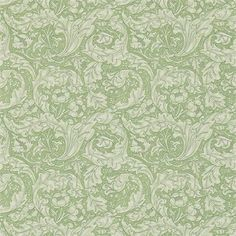 Bachelors Buttons Wallpaper, green floral wallpaper, from the Archive III wallpaper collection Wallpaper Size, Wallpaper Online, Fabric Wallpaper, Wallpaper Roll, Green Floral Wallpaper, Bachelor Buttons, Painted Rug, Dramatic Effect, Art Nouveau