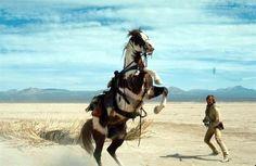 Hidalgo and actor Viggo Mortensen. Pretty Horses, Beautiful Horses, Mustang, Horse Movies, Horse Facts, Real Cowboys, Viggo Mortensen, Western Movies, Best Western