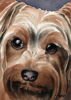 YORKSHIRE TERRIER Dog Art Print Signed by Artist DJ Rogers