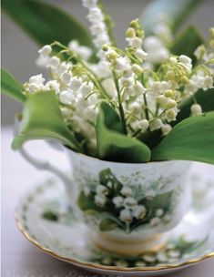 Lily of the Valley Tea Cup Bouquet, This photo leads directly to the post it was created from even though it is not in it itself. There are lots of lovely lily of the Valley photos. Cut Flowers, Fresh Flowers, Spring Flowers, White Flowers, Beautiful Flowers, Deco Floral, Arte Floral, Arreglos Ikebana, Lily Of The Valley Flowers