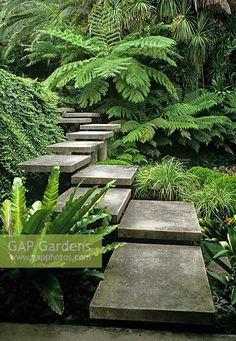 What To Search For Right Before You Purchase Your Higher Than Floor Pool Flight Of Steps With Change In Direction Floating Through Foliage - Australia - Exquisite Staircase Tropical Garden Design, Tropical Landscaping, Garden Landscape Design, Modern Landscaping, Backyard Landscaping, Landscaping Ideas, Tropical Gardens, Landscape Plans, Back Gardens