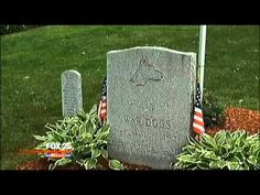 Mom Buries Beloved German Shepherd's Ashes. When She Reveals His Tombstone, Unbelievable...