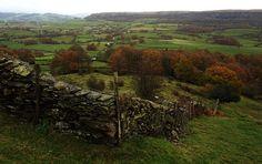 pagewoman:  Cartmel Fell,South Lakeland , Cumbria, England. by stridingedge