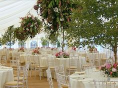 Love foliage decoration, trees inside the building, hanging baskets instead of chandeliers