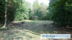 Dianasvej 1 ., Hønsinge L, 4560 Vig - Lækker randbeplantet sommerhusgrund #fritidsgrund #grund #grundsalg #vig #selvsalg #boligsalg #boligdk