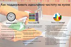 Картинки по запросу инфографика кухня