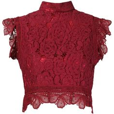 Martha Medeiros Crop Lace Blouse (€1.155) ❤ liked on Polyvore featuring tops, blouses, crop top, shirts, cropped, red, stand collar shirt, lace blouse, red lace blouse and lace shirt