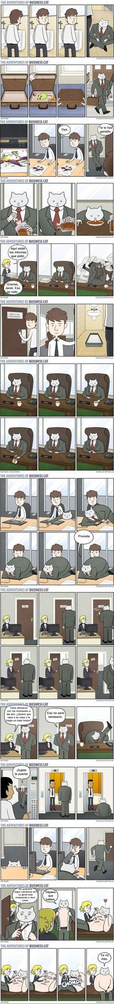 Las aventuras del gato empresario