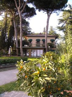 Hotel Kursaal Passignano Sul Trasimeno Situated on the shores of Lake Trasimeno, Hotel Kursaal is set among extensive gardens. It offers free Wi-Fi and air-conditioned rooms with satellite TV. Rooms at the Kursaal have classic-style furnishings, a minibar and private bathroom.