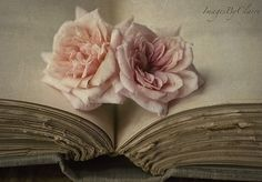 lovely old books collage of different views. Memento Mori, Old Books, Vintage Books, Antique Books, Vintage Lace, Vintage Pink, Vintage Style, Decoration Shabby, Shabby Chic