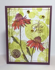 Tim Holtz Coneflower stamp. Bo Bunny stitches stamp fir outline. Stampin Up stamps for background. Tombow markers used for colouring flowers.