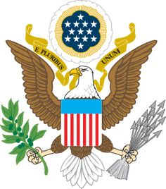 American Eagle Passport Image - Brownie Journey