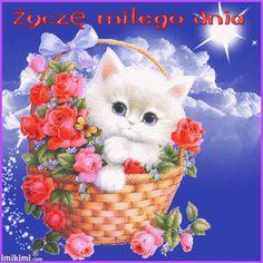 Crochet Hats, Teddy Bear, Toys, Dance, Google, Cute Cartoon Animals, Cartoons, Adorable Kittens, Cats