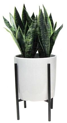 Threshold Artificial Plant in Stand Large - Target