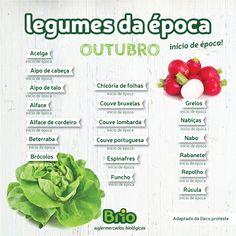 Brio Biológico - Legumes da época