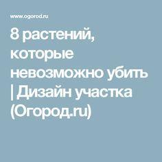 8 растений, которые невозможно убить | Дизайн участка (Огород.ru)