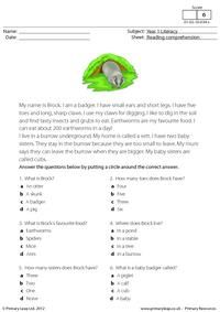 Having strong reading comprehension skills will also help in other subjects. Students read the text about a badger called Brock and answer the multiple choice questions. This is a fun way to learn about animals! I Like To Dance, School Worksheets, Free Worksheets, Reading Comprehension Worksheets, English Reading, English Activities, Interactive Learning, School Readiness, Student Reading