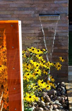 The second, central area of the garden is planted with low maintenance architectural plants.  Four screens of various dimensions emerge from the planting and help to obscure the rear of the space from view.  Each screen features a different material: wooden panelling, textured stone tiles, stainless steel mesh and orange Perspex.  A stainless steel water blade installed on one of the screens will give the space a contemporary feel that emulates the interior of the house #steel #yellowdaisy