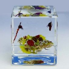 Paul Stankard Square Glass Paperweight - Bee and Dragonfly over a Bouquet.