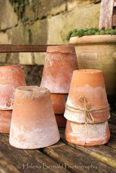 Lots of terracotta pots