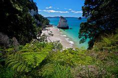 Te Hoho Rock: Cathedral Cove - Coromandel Peninsula New Zealand / fern / white sand / clear water / blue /
