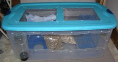 Small-Animals - My future rats new cage! :D