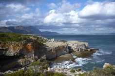 Where to Whale Watch in South Africa Sa Tourism, Square Photos, Flash Photography, Champs Elysees, Photo Checks, Whale Watching, Countries Of The World, Best Memories, Cliff Edge
