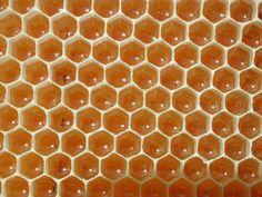 Honey...Nature's Precious Gift!