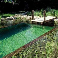 DIY natural swimming pool.