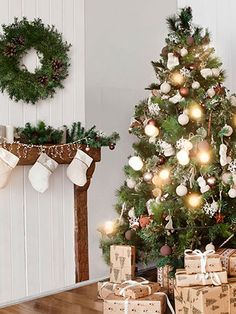 Vast selection of Christmas backdrops for photography. We have everything from snowy holiday scenes to traditional Christmas backgrounds. Christmas Photography Backdrops, Christmas Backdrops, All Things Christmas, Christmas Tree, Portable Backdrop, Vinyl Photo Backdrops, Paper Backdrop, Magnetic Wall, Backdrop Stand