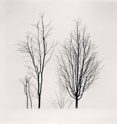 Michael Kenna Collection