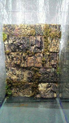 Diy tarantula enclosure