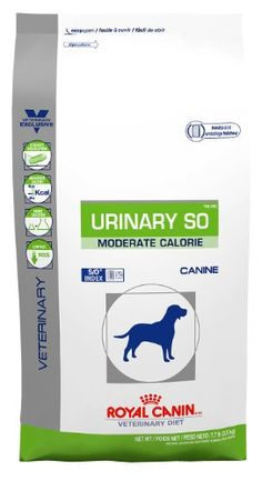 Royal Canin Urinary SO Moderate Calorie Dry Dog Food 77 lb bag * You can find out more details at the link of the image.