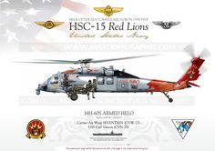 SH-60F / MH-60S / MH-60R ARMED HELO