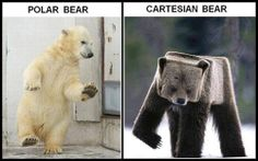 Bears & Math Jokes, could it get any better?!?!?